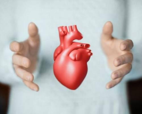 Diferències entre una aturada cardíaca i un infart